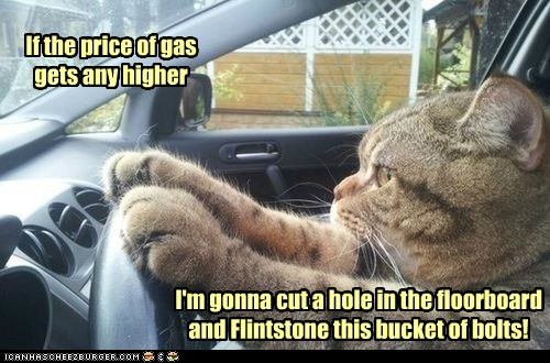 If the price of gas gets any higher I'm gonna cut a hole in the floorboard and Flintstone this bucket of bolts!