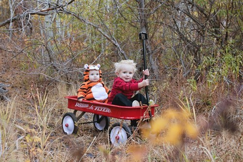 halloween costumes daww calvin and hobbes g rated Parenting FAILS
