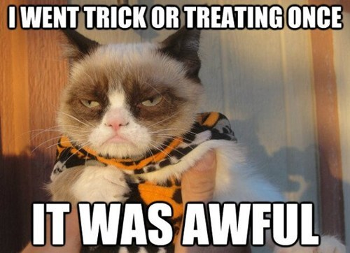 halloween,trick or treat,Memes,i had fun once,Grumpy Cat,tard,awful,costumed critters,g rated