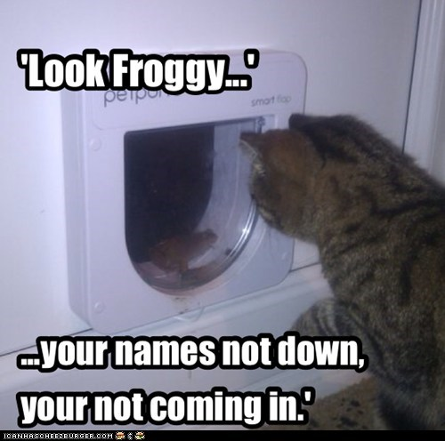 door,list,VIP,captions,Cats,name,frog,exclusive