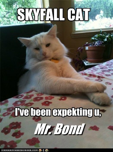 bond,movies,james bond,skyfall,captions,007,references,Cats,villain