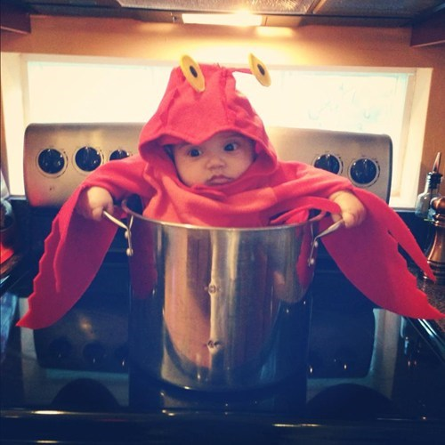 lobster baby costume - 6726953472