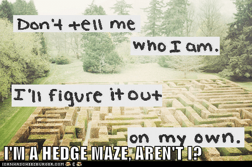 hedge maze,hipster,who am i