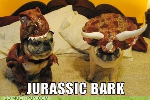 dogs,dinosaur,similar sounding,costume,bark,jurassic park,dinosaurs