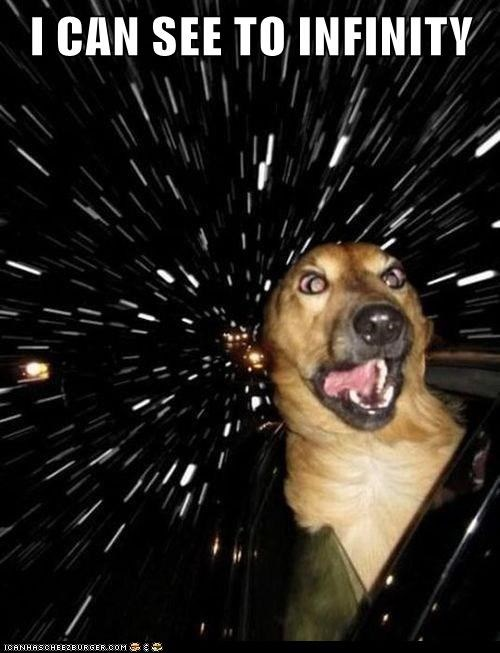 car window dogs infinity outer space stars what breed