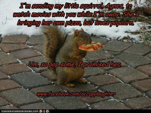 I'm sending my little squirrel, Agnes, to watch movies with you while I'm away. She's bringing her own pizza, but loves popcorn. www.facebook.com/occupylaughter Um, so pop some, I promised her.