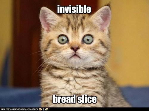 invisible bread slice