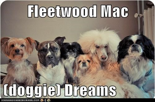 Fleetwood Mac  (doggie) Dreams