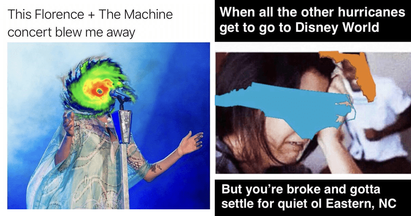 Funny memes about Hurricane florence, florence and the machine, sharks.