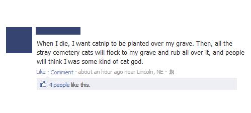 cemetery status updates catnip gods facebook Cats