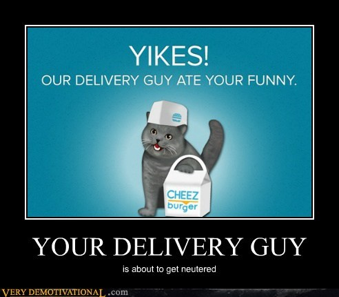 yikes cheezburger cat delivery guy - 6729429504