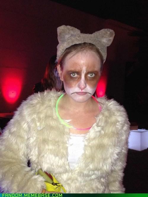 It's Grumpy Cat!!!