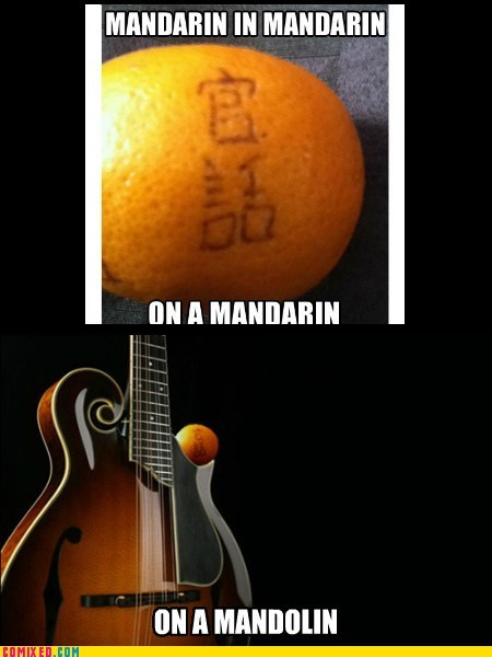 i win yo dawg mandolin mandarin