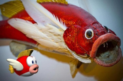IRL,cheep cheep,kinda creepy,fish,mario