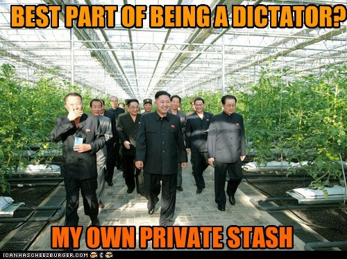 kim jong-un,stash,private,dictator,weed,unday