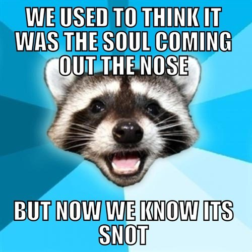 soul,its-not,snot,not,liaison,sneezing