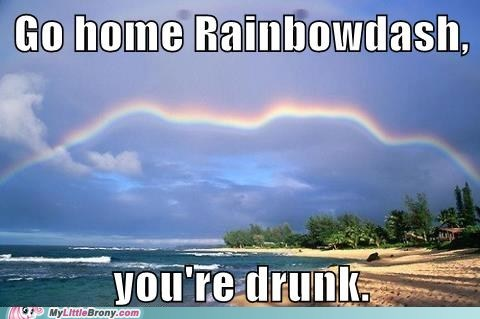 go home you're drunk,cider,funny,rainbow dash