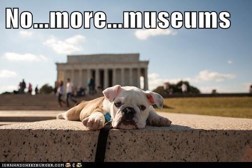 No...more...museums