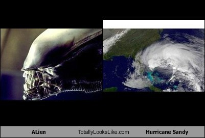 xenomorph,TLL,weather,alien,funny,hurricane sandy