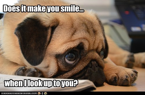Does it make you smile... when I look up to you?