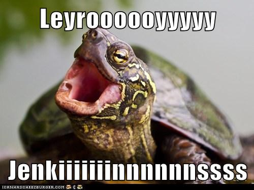 old turtles yelling behind slow leroy jenkins - 6732472064