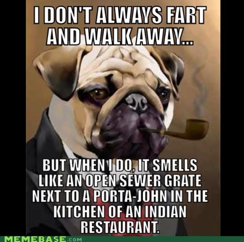 farts the most interesting man in the world kitchen dogs - 6732562944
