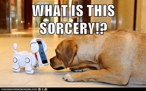 dogs,technology,robot,what sorcery is this,puggle