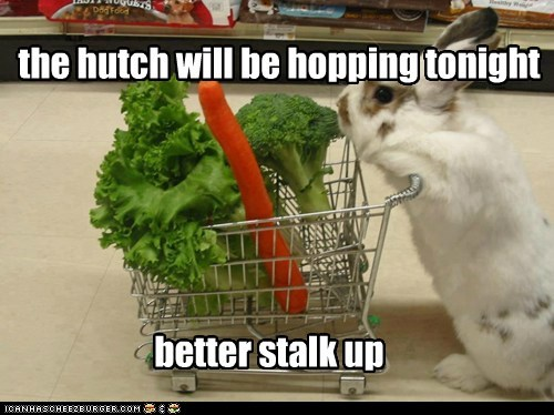 vegetables,pun,shopping,stalk,rabbit,bunny,stock