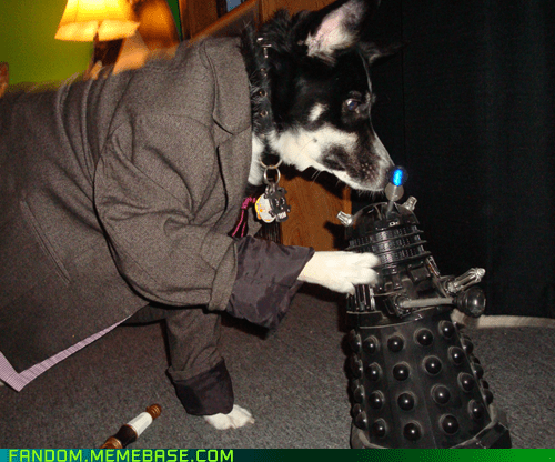 dogs cosplay pets cute doctor who - 6735609088