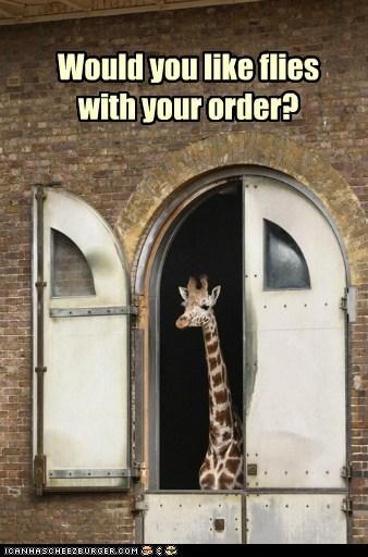 giraffes fries fast food flies - 6736374784