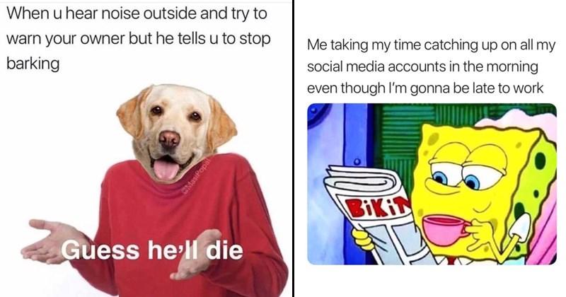 Harry Potter dog memes random memes SpongeBob SquarePants funny memes spongebob memes funny tweets funny twitter rapper snoop dogg - 6736389
