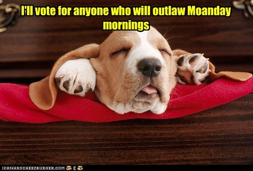 I'll vote for anyone who will outlaw Moanday mornings