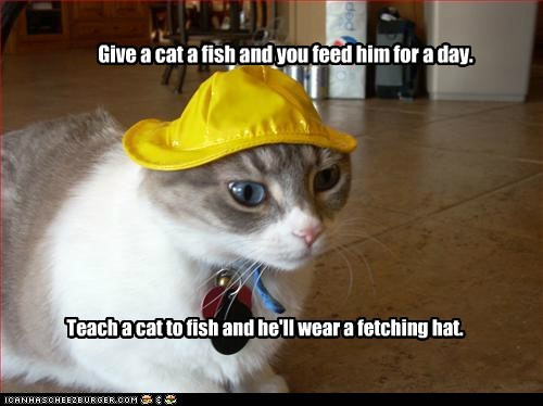 Give a cat a fish and you feed him for a day. Teach a cat to fish and he'll wear a fetching hat.