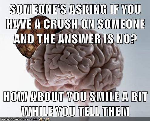 SOMEONE'S ASKING IF YOU HAVE A CRUSH ON SOMEONE AND THE ANSWER IS NO?  HOW ABOUT YOU SMILE A BIT WHILE YOU TELL THEM