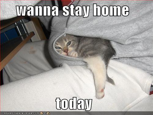 I Wanna Stay Home