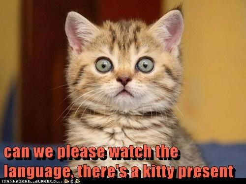 can we please watch the language, there's a kitty present