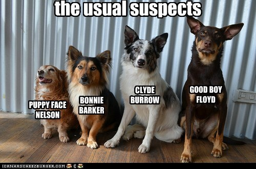 dogs,usual suspects,movies,parody,thriller,what breed