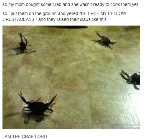 freedom lord crabs claws