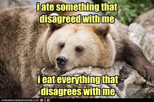 everything bear disagree argument eating