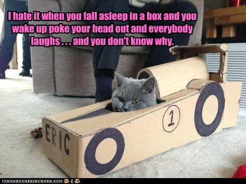 I hate it when you fall asleep in a box and you wake up poke your head out and everybody laughs . . . and you don't know why.