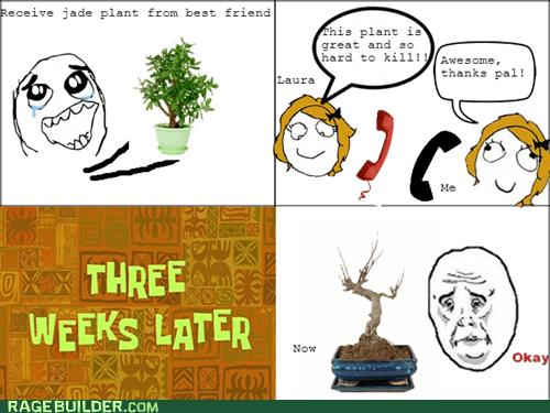 plants FAIL Okay - 6738796288