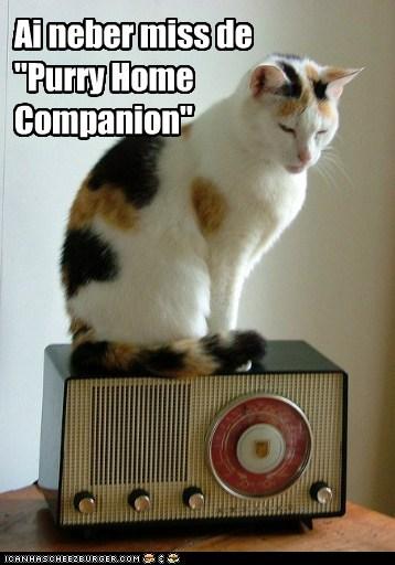 """Ai neber miss de """"Purry Home Companion"""""""