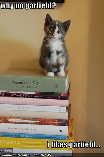 books cute garfield kitten lolcats lolkittehs - 673901824