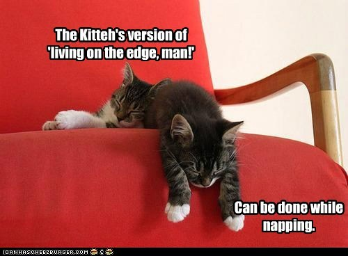The Kitteh's version of 'living on the edge, man!' Can be done while napping.