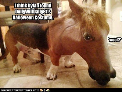 I think Dylan found DollyWillDally81's Halloween Costume. *woof?*