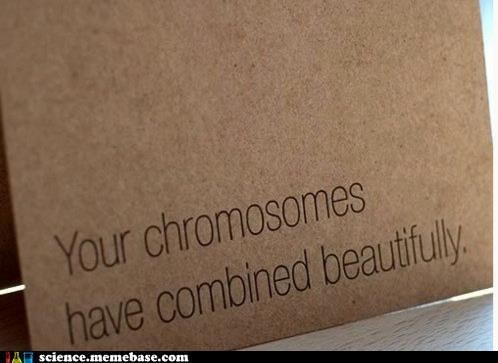 smooth chromosomes sexy - 6740652800