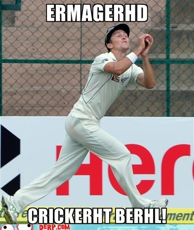 sports,cricket,Ermahgerd,ball,down under