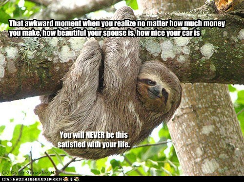 life that awkward moment satisfied happyness sloth - 6741203456