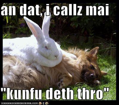 bunny murder whatbreed - 674124544