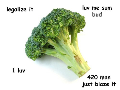 drugs,marijuana,broccoli,Legalize It,bud